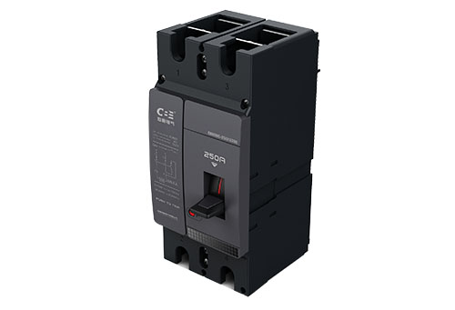 DC1000V Two Poles Circuit Breaker